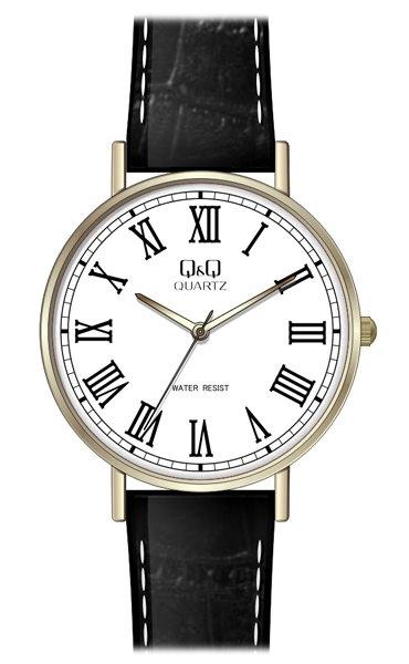 Мужские часы Q&Q Q978J809Y