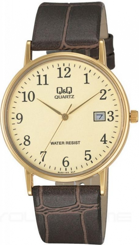 Мужские часы Q&Q BL02J103Y