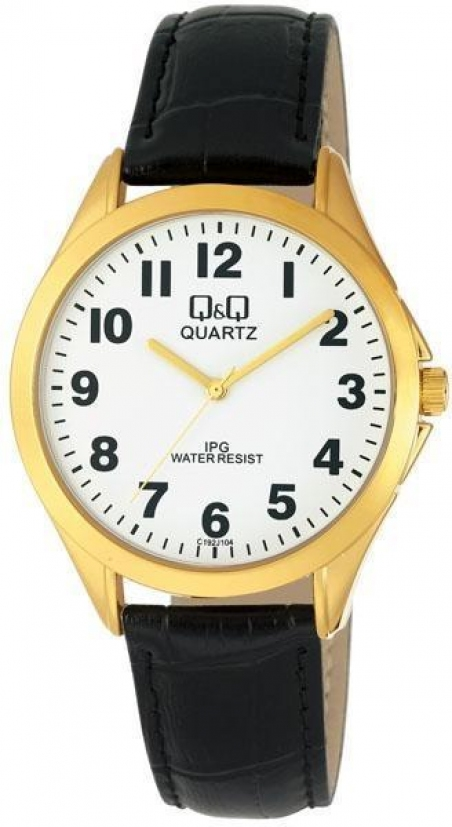 Мужские часы Q&Q C192J104Y