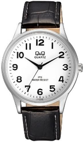 Мужские часы Q&Q C214J304Y